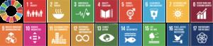 De 17 verdensmål fra FN